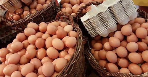 Os Benefícios dos Ovos